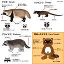 Ne confondez pas le tanuki avec un ballon de foot ou un lampadaire !