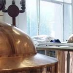 Bière - brasserie